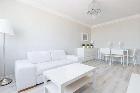 Horizontal view of white studio apartment interior