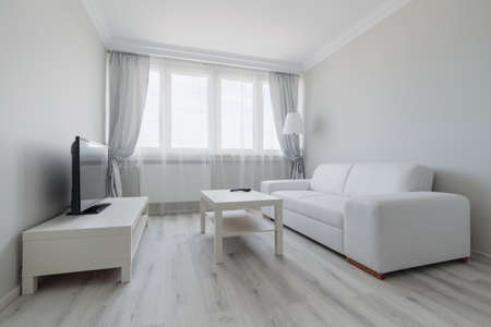 Horizontal view of white living room design Stock Photo