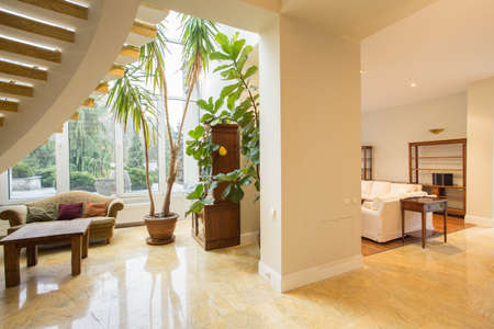 plante: Intérieur de salon en manoir luxueux Banque d'images