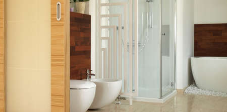 en suite: Contemporary bathroom with a bath, shower and bidet Stock Photo