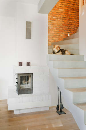 modern living: Photo of fireplace in cozy modern living room Stock Photo