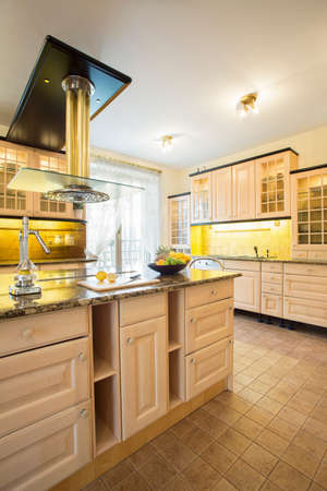 Vertical view of squeezer on countertop in luxury kitchen photo