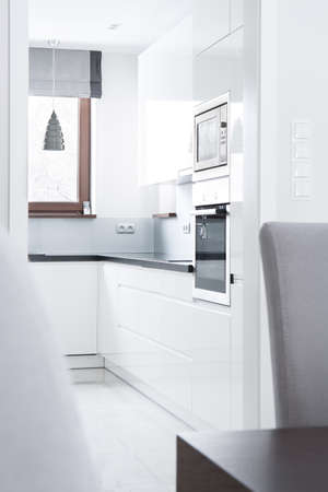 white light: White light kitchen in the contemporary apartment