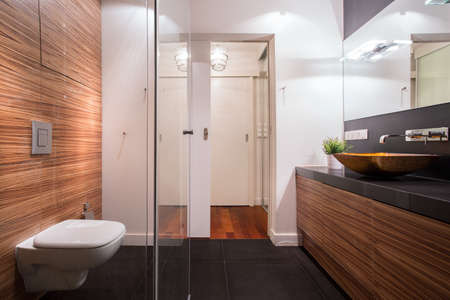 Photo of exclusive new washroom with wooden walls