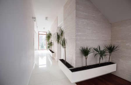 Elegant decorated white hallway in big modern residence
