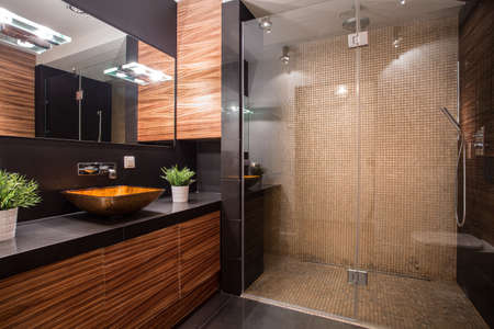 bathroom design: New modern bathroom with fancy shower on the wall