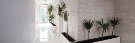 anteroom: White exclusive hallway with exotic floral decorations Stock Photo