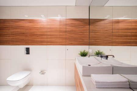 派手な盆地と白の排他的な小さなトイレ
