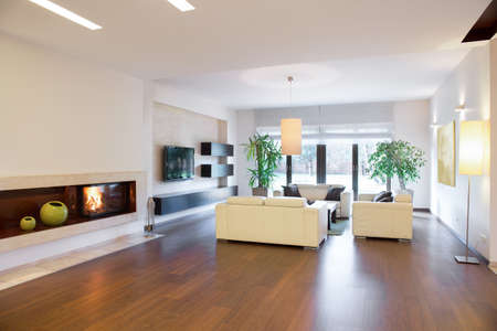wood floor: Cozy spacious living room in luxury house