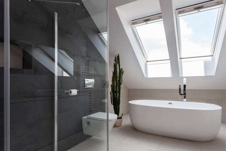 shower cubicle: Shower cubicle and bathtub in elegant bathroom