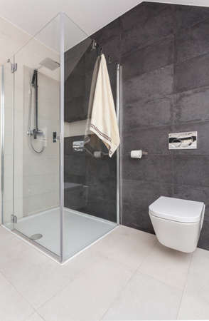cubicle: Picture of shower cubicle in modern toilet