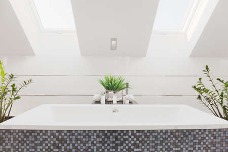 hydromassage: Modern furnished bathroom with chrome elements Stock Photo