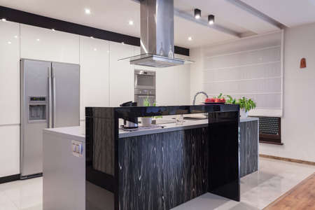 gleaming: Gleaming silver kitchen in elegant detached house Stock Photo