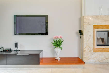 Plasma TV on the wall in living room