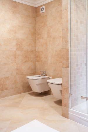 lavatory: Lavatory and bidet in beige luxury toilet