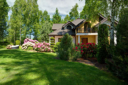 Luxe vrijstaande woning met schoonheid groen gazon Stockfoto - 42199256