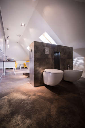 spacious: Toilet and bidet in luxury spacious bathroom