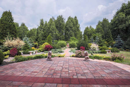 paved: Picture of beauty plants in the backyard