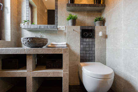 handbasin: Toilet for guest interior in luxury house