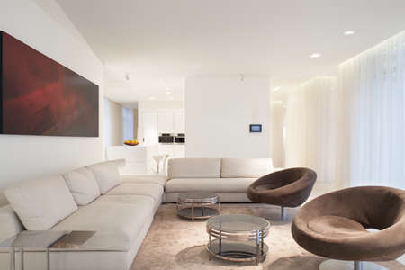 Designed furniture in beige luxury living room