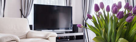 luxury apartment: Plasma TV and tulips bouquet in living room
