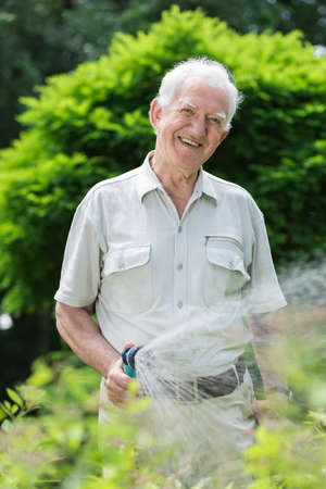 hosepipe: Elder smiling gardener with hosepipe watering grass Stock Photo