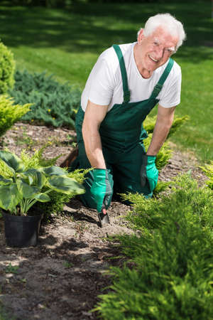 retiree: Smiling retiree caring about plants in garden