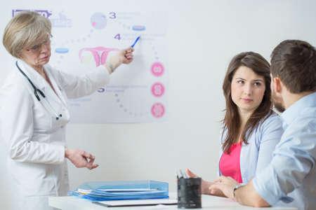 in vitro: Ginecólogo utilizando en el esquema vitro para explicar este proceso