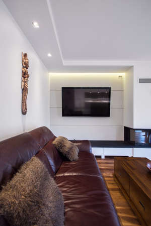 brown leather sofa: Brown leather sofa in exclusive living room Archivio Fotografico