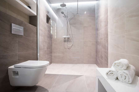shower: Shower with glass door in exclusive bathroom