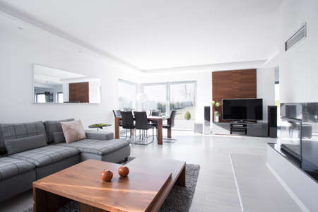 Modern and spacious living room in the house