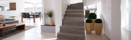 roomy: Wooden stairs in a hallway of the house