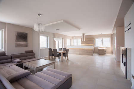 glossy: Commodious living room with huge suede beige sofa