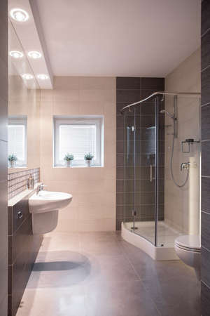 downlight: Spacious modern bathroom with shower and small window