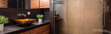 Panorama of luxurious dark bathroom interior with shower