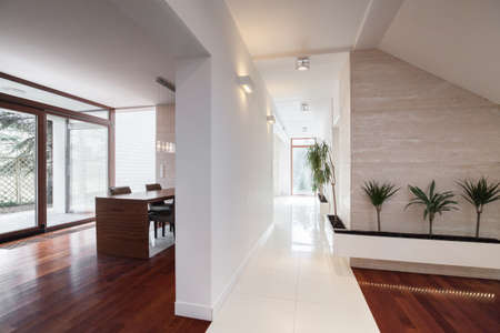 space area: Photo of contemporary design luxurious villa interior