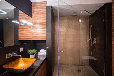 home lighting: Photo of stylish dark bathroom interior with big shower