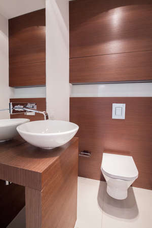 imitations: Picture of elegant white fixture in wooden bathroom Stock Photo