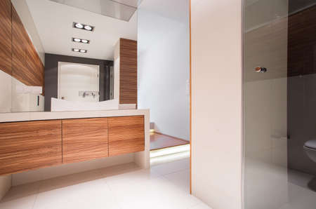 Image of spacious bathroom with decorative wood imitation tile