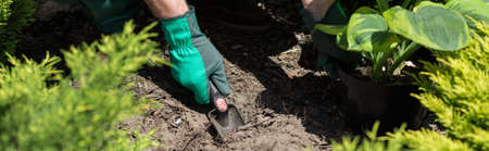 horticulturist: Panorama of horticulturist planting new plants in garden Stock Photo