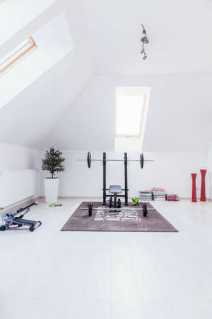 domestics: Small gym arranged in white room at home