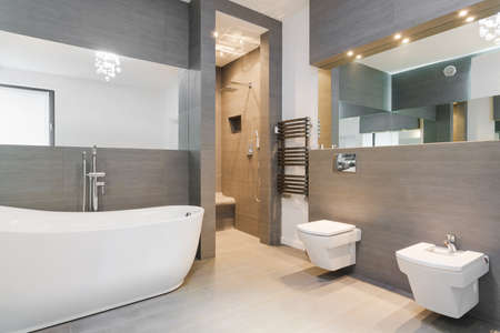 Elegant spacious bathroom decorated in classic style 免版税图像