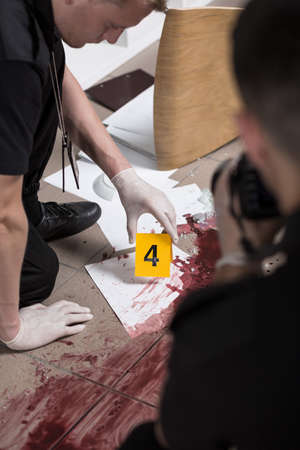 forensic: Vertical view of forensic scientist at work