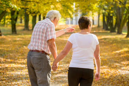 strolling: Elderly marriage strolling in park in autumnal day