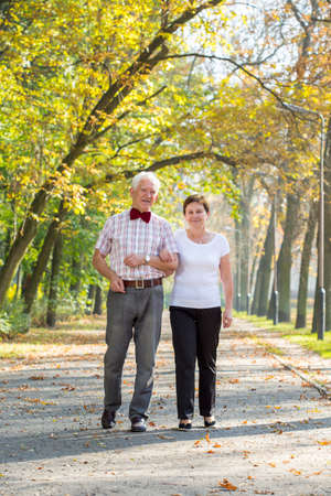 walk in: Elderly couple during walk in autumn day