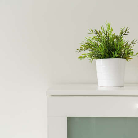 Close up of green plants in white pots on cabinet Stock Photo