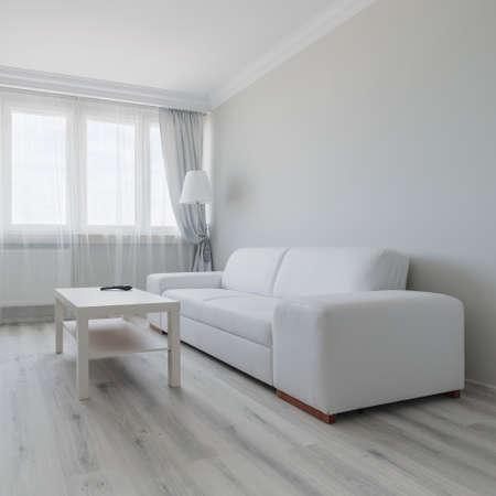 白のリビング ルームのデザインの横の眺め
