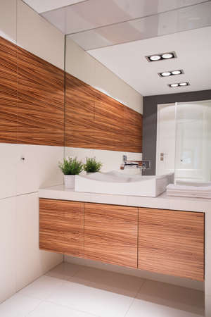 bathroom wall: White and brown toilet in contemporary house