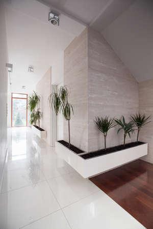 residence: Long white corridor in elegant luxury residence