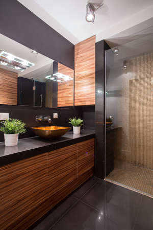 bowl sink: Picture of black and brown bathroom design